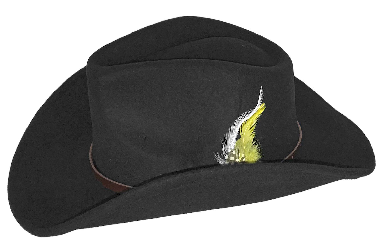 Hard Felt Western Hat